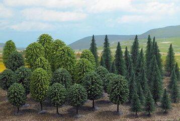 Bomen en struiken