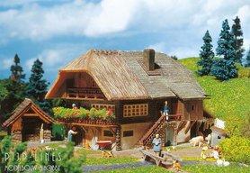 Schwarzwaldboerderij