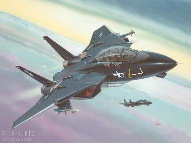 F-14 A Black Tomcat