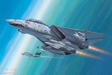 F-14 Super Tomcat