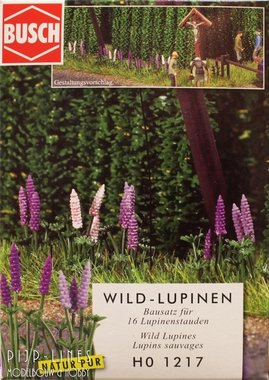 Wilde lupine paars
