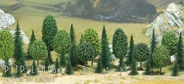 35 Dennenbomen en Loofbomen