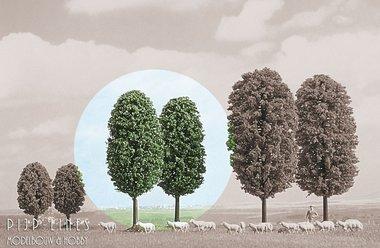 2 Kogelbomen