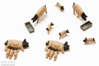 Huiselijke varkens met biggen