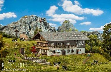 Grote alpenboerderij