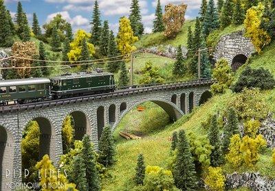 Viadukt Val Tuoi