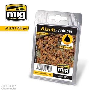 MIG 8406 Berk Herfst bladeren