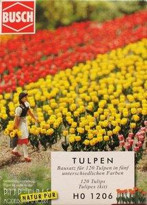 Busch-1206-Tulpen