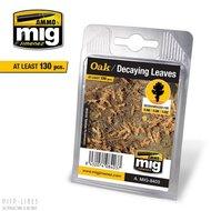 MIG 8403 Eiken Rottende bladeren