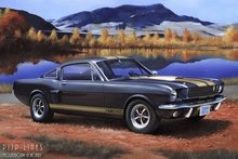 Revell_07242_Shelby_Mustang_GT350_H