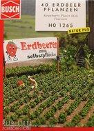 Busch-1265-Aardbei-Planten